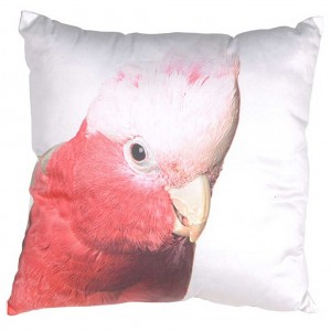 Budgie cushion