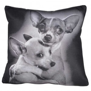Chihuahuas cushion