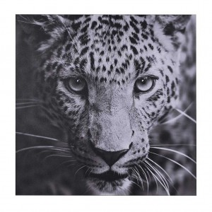 Leopard picture wall art
