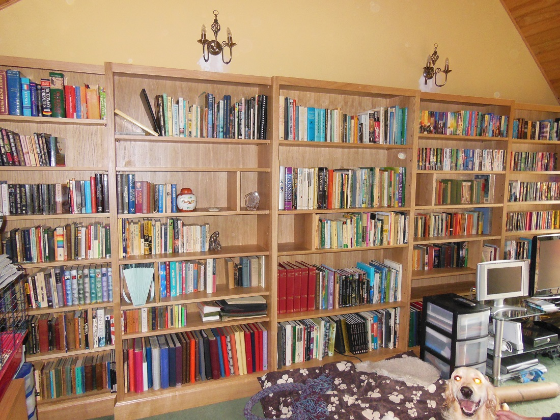 fitted-bookcase-2